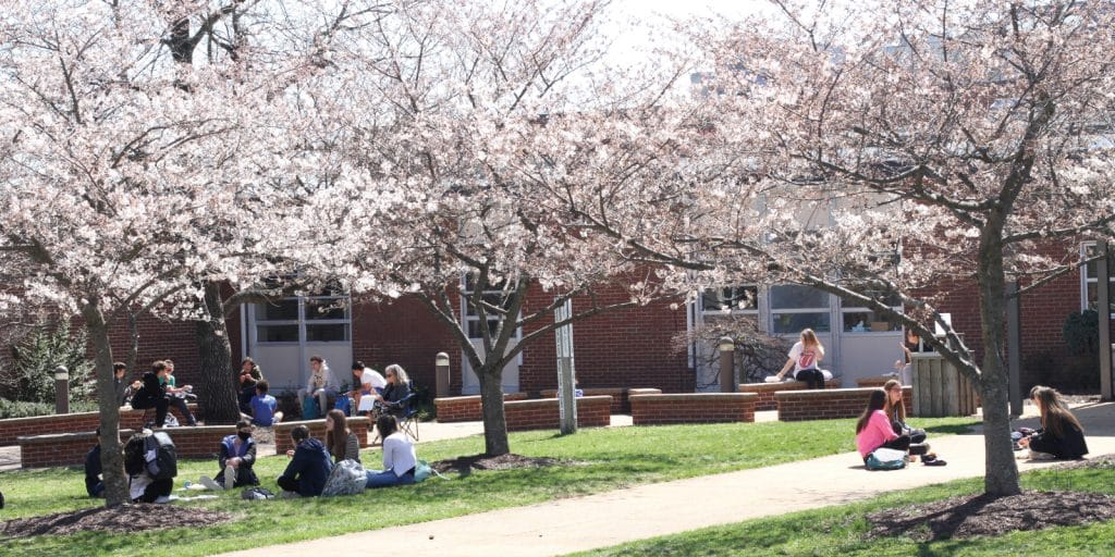 One year ago, the image here showed the same trees in full bloom and an empty sidewalk. This spring the same scene was filled with life thanks to masks, distancing, and other safety measures.