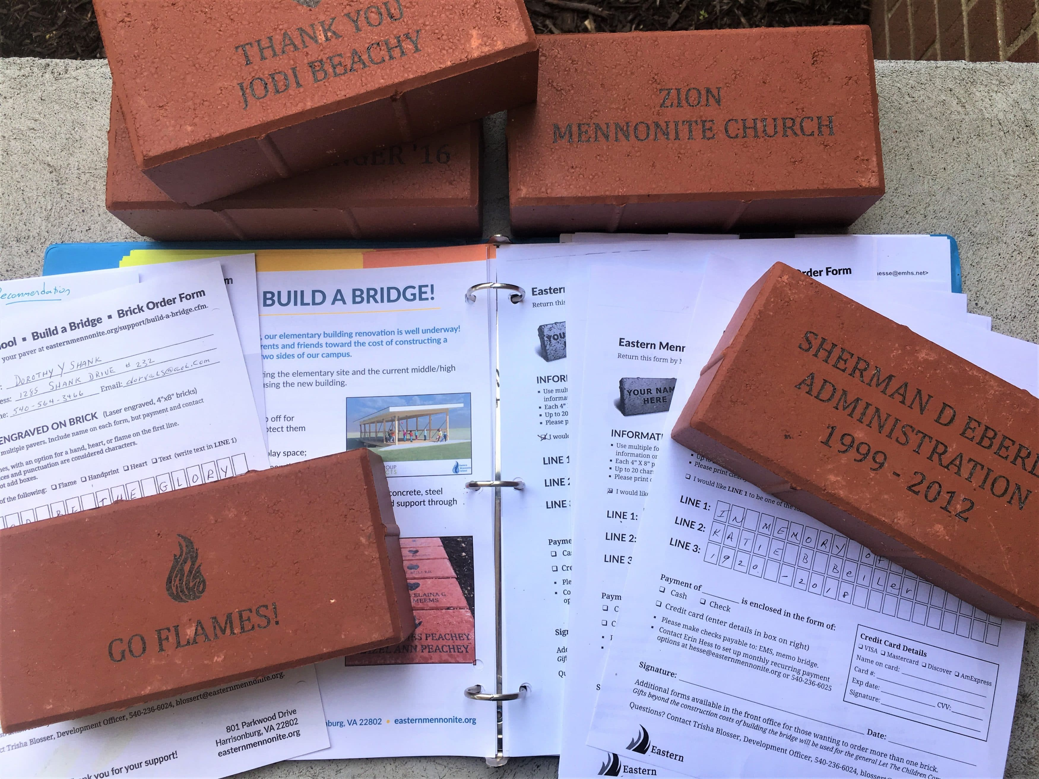 Bricks for bridge