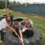 Middle school science classes help install tires in playground.