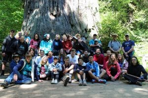 Discovery 2017, Redwood State Park, California