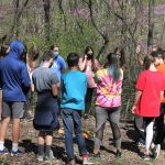 8th grade and cooperative games